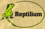 Logo von Reptilium Terrarien- und