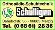 Logo von Schulligen