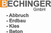 Logo von Naheliegend in Oberschwaben!
