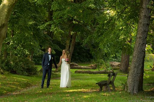 Hochzeiten - Pictures & More